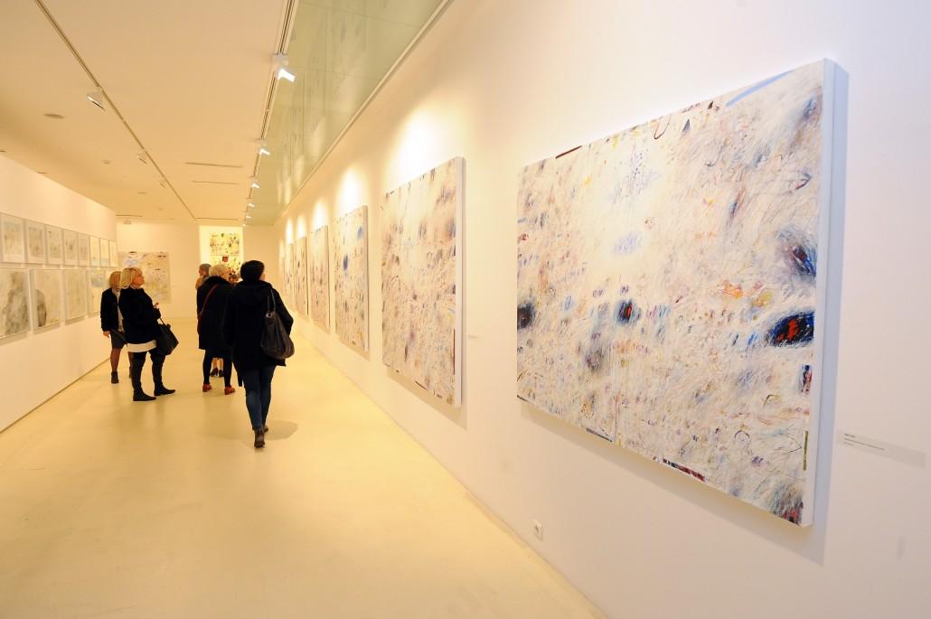Split, 17.12.2015. -  U Galeriji umjetnina otvorena je izložba